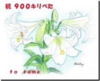 900-s